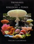 treasures-from-the-kingdom-of-fungi